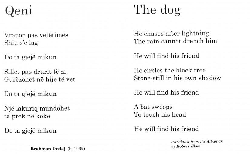 «Qeni» i Rrahman Dedajt
