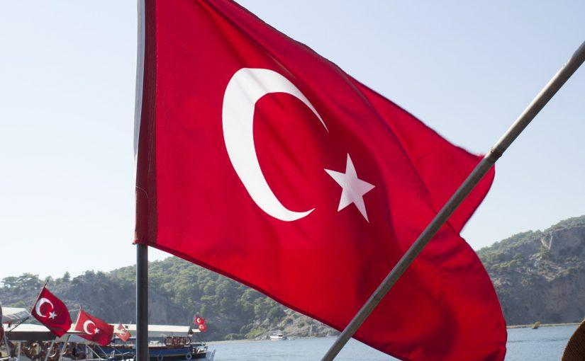 Pas referendumit: Erdoğani si Mbreti Aleksandër i Jugosllavisë